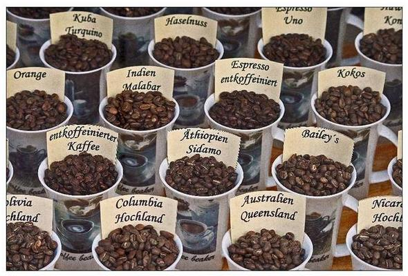 All Kinds Of Coffee Beans